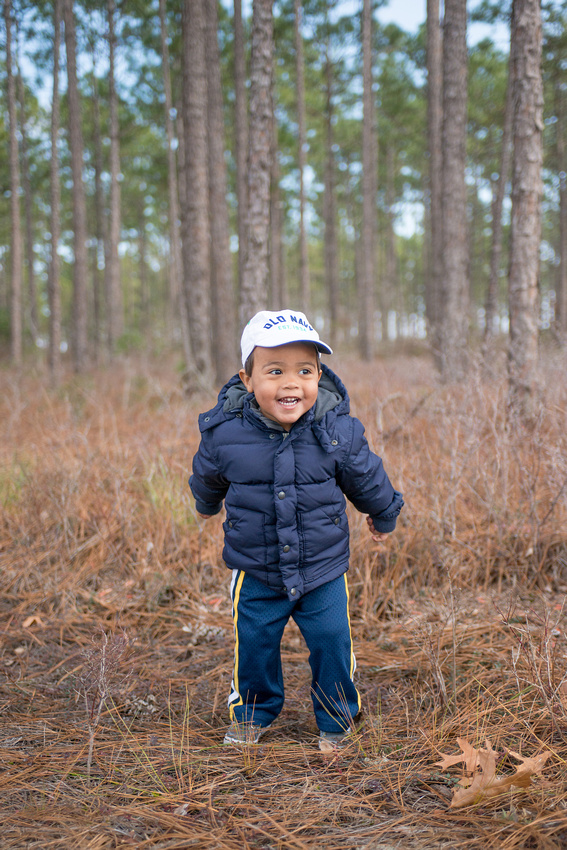Natural light portrait of a 2 year old toddler in open shade at the edges of a pine tree wooded area by Northern Virginia wedding and portrait photographer Roger Hammons